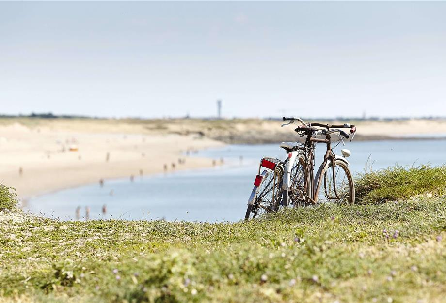 discover the Vendée by bike - ST HILAIRE DE RIEZ CAMPSITE